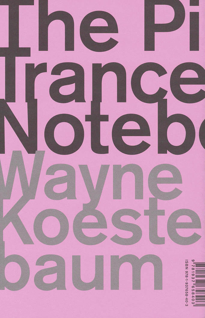 The Pink Trance Notebooks