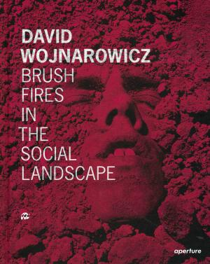 Brush Fires in the Social Landscape - cover image