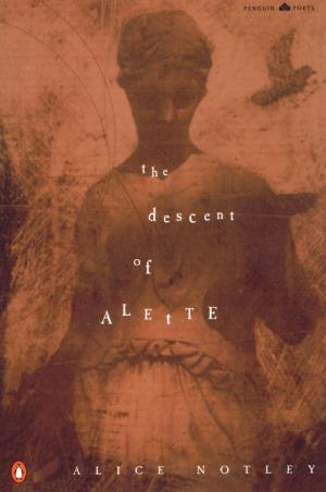 The Descent of Alette - cover image