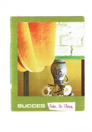SUCCES - cover image