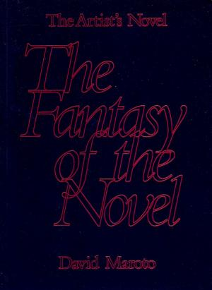 The Fantasy of the Novel - cover image