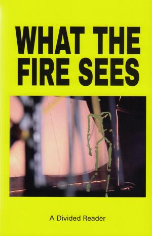 What The Fire Sees - cover image